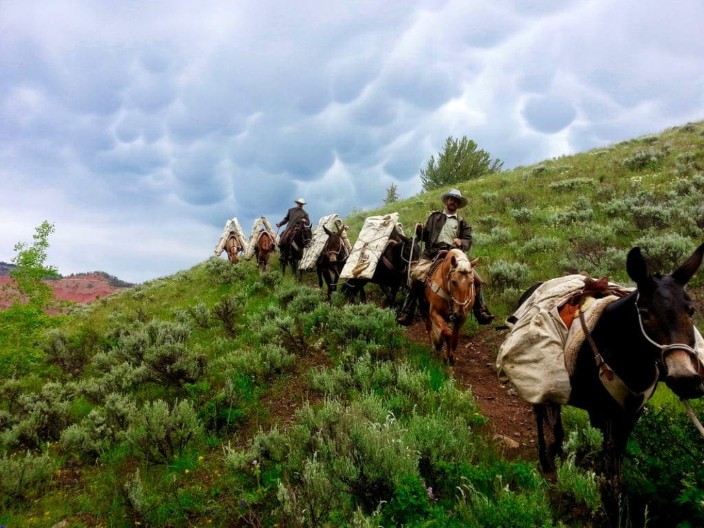 Gros Ventre, Wyoming Horsepacking with the USFS.