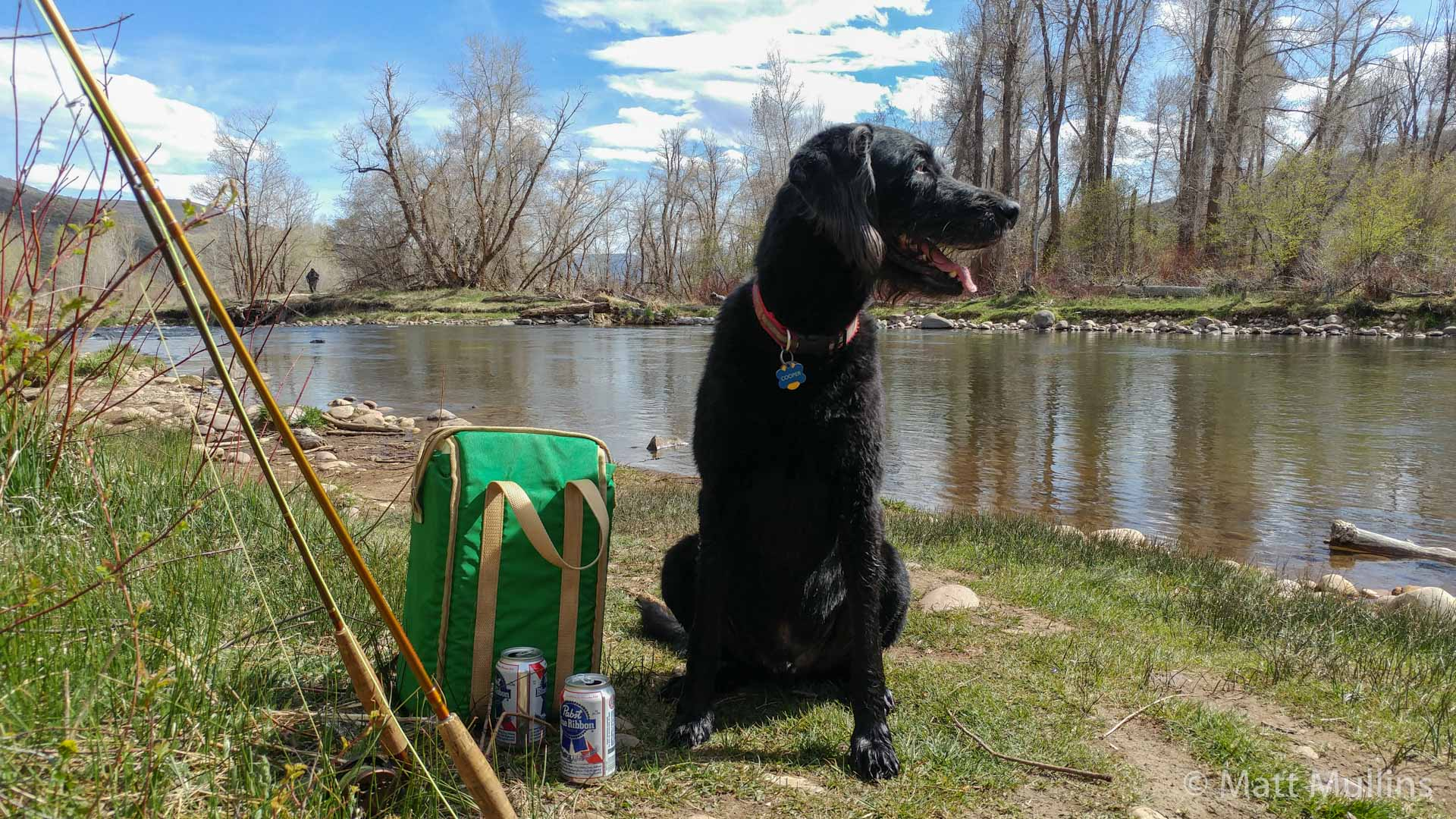 Fly fishing with Cooper on the Provo River