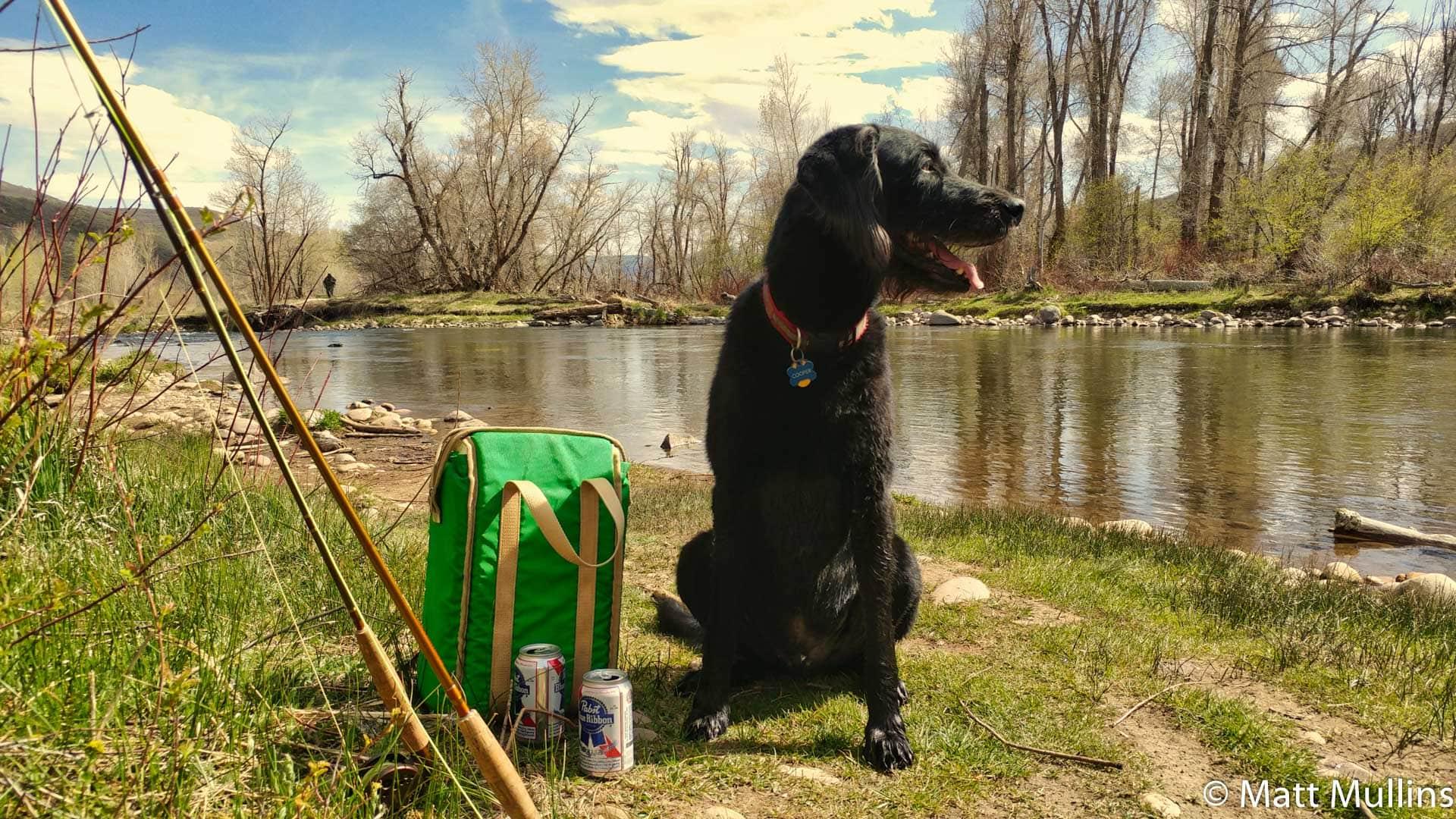 Dog Fly Fishing