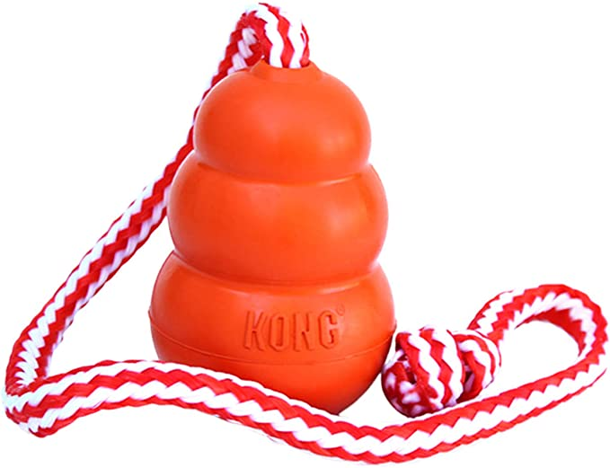 KONG - Aqua - Floating Fetch Dog Toy for Water Play